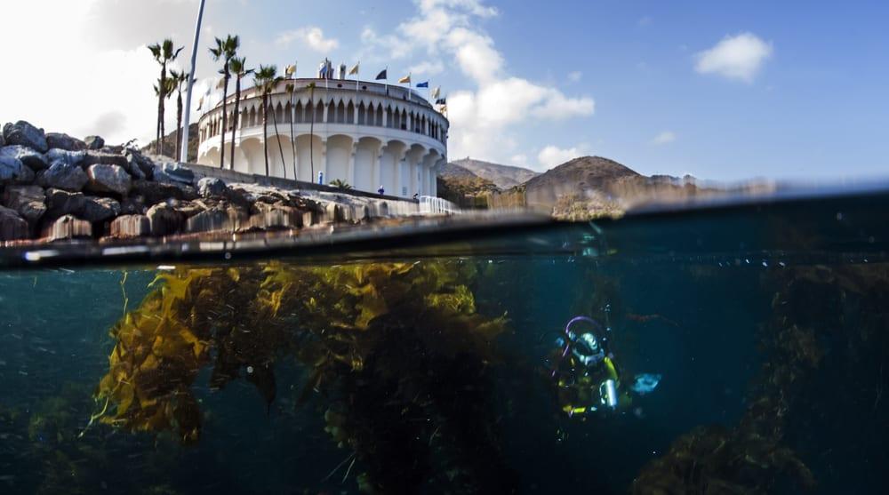 Catalina-Island-yacht-charter-beach