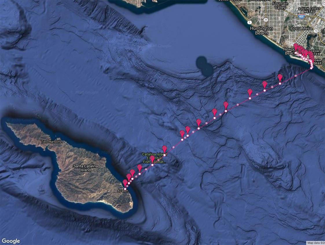 Newport-Beach-Yacht-Charter-to-Catalina-Island