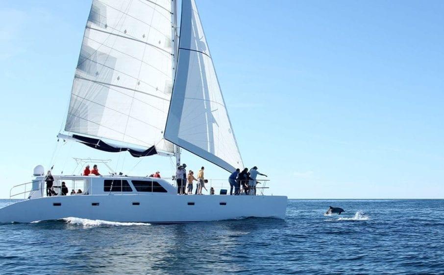 San Diego Yacht Rentals 60' Catamaran Dolphin Cruise